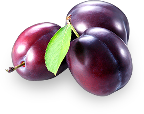 plums.png